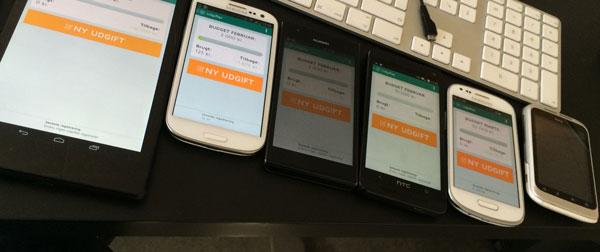 lommebudget-test