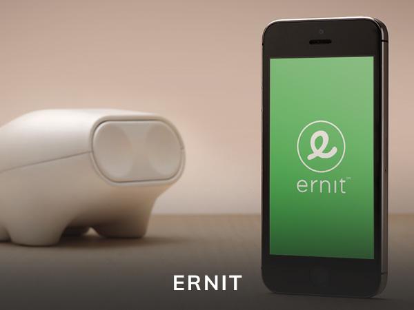 ernit app